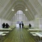 В Нескучном саду открылся шахматный клуб «Белая ладья»