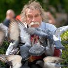 В мегаполисе стали все чаще находить трупы голубей