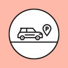 Парконы в Подмосковье установят на машины чиновников