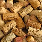 Сухой остаток: люди, которые помогают выбрать вино в супермаркете