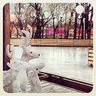 Первые Instagram-снимки катка в парке Горького