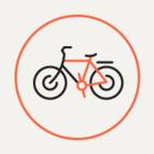 Смольный попросил велосипедистов не ездить по Дворцовой площади