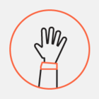 «Синергию» оштрафовали за сбор отпечатков пальцев детей для лженаучного теста (обновлено)