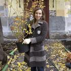 На Китай-городе возрождают сад XV века