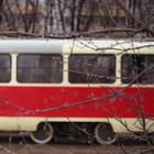 В Москве разрабатывается новая маршрутная сеть трамваев