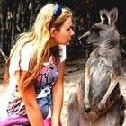 Охота на кенгуру