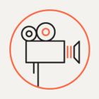 «Ростелеком» скупает онлайн-кинотеатры