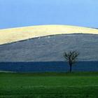 Выставку работ Франко Фонтаны покажут в «Росфото»