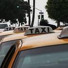 Петербуржцы смогут выбрать места официальных стоянок такси