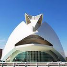 Работы архитектора-гуманиста Сантьяго Калатравы выставили в Эрмитаже