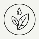 В Ботсаду появится уголок редких растений Ленобласти и новые подписи к экспонатам