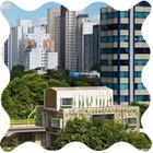 Дизайн от природы: Тропическая архитектура Бразилии
