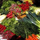 В Москве овощи нового урожая можно купить на 41 ярмарке