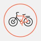 Количество поездок на велосипедах проката в 2015 году
