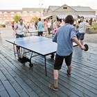В «Новой Голландии» стартуют турниры по настольному теннису между национальными диаспорами