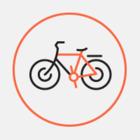 Интенсивность велосипедного движения в разных районах Петербурга