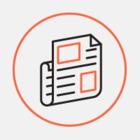 Владивостокский «Кот Бродского» претендует на звание главного книжного блога года