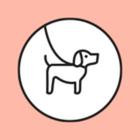 В «Этажах» собирают подарки для животных из приютов