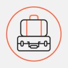 Весы и чемодан: Что россияне покупают перед путешествием