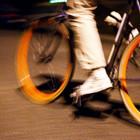 В этом году «Велоночь» будет посвящена Петергофу