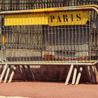 Париж в цвете