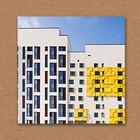 Правила общежития: Отношения с соседями и чистота в подъезде