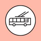 Ночные автобусы хотят запустить до всех аэропортов