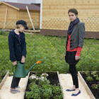 «Лавка» открывает большой публичный огород в центре Москвы