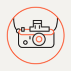 На «Яндекс.Картах» появились панорамы российских заповедников