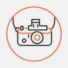 Лучшие фотографии «Лахта-центра» с конкурса «Доминанта будущего»