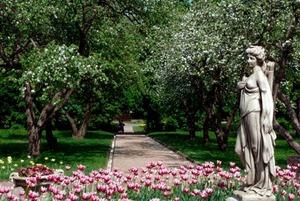 Царский сад, квартира Южина и «дом на ножках»: Куда идти в «Ночь музеев»