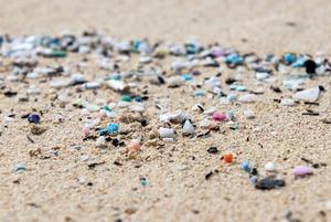 Микропластик: Как крошечные частицы вредят природе и человеку