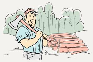 Откуда суши-бары берут палочки?