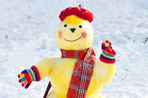 Люди в городе: «Арт-битва снеговиков»