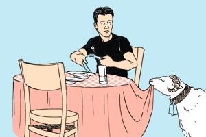 Есть вопрос: «Можно ли держать животных в ресторане?»