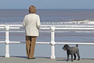 Когда выходят на пенсию за границей?