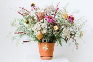 Раз ромашка, два ромашка: Из каких цветов и растений делать букеты на даче
