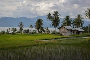Не только Бали: Большой гид по Индонезии