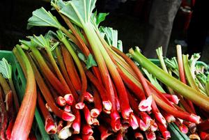 Земляника, ревень, лисички и жимолость: Что покупать на рынке в июле