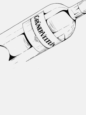 Как правильно выбрать грюнер вельтлинер