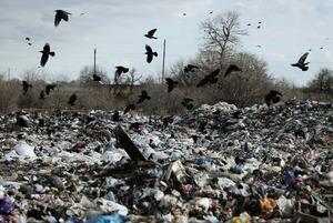 Госдума приравняла сжигание мусора к переработке. Как такое возможно?