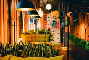 14 новых кафе, баров и ресторанов ноября