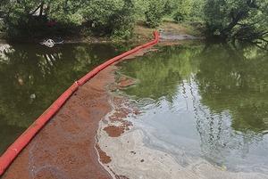 Отголоски Норильска: Чем опасен разлив нефти в Химках