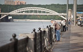 На крючке: Что можно выловить в Москве-реке?