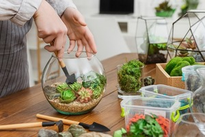 Как сделать флорариум самому