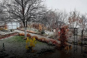 Первый октябрьский снег в инстаграмах приморцев