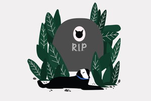 Сколько стоит похоронить домашнее животное?