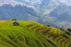 Вьетнам: Большой гид для путешественников