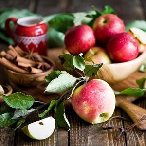 «День яблок», Международный Медиа Форум, выставка Майи Зак в «Тайге» и еще 17 событий