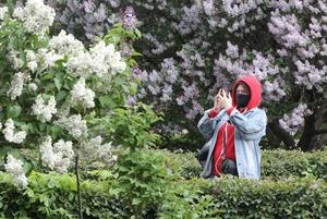 С 1 июня в Москве — прогулочный режим: Как теперь гулять и бегать, нужны ли маски и зачем пропуска